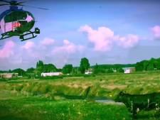 Rebellerende koe terug haar weiland in dankzij politieheli