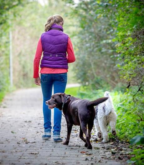 'Pak baasjes loslopende honden in Wijchen aan'