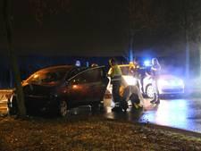 Automobilist raakt lantaarnpaal, vluchtheuvel én boom in Vianen