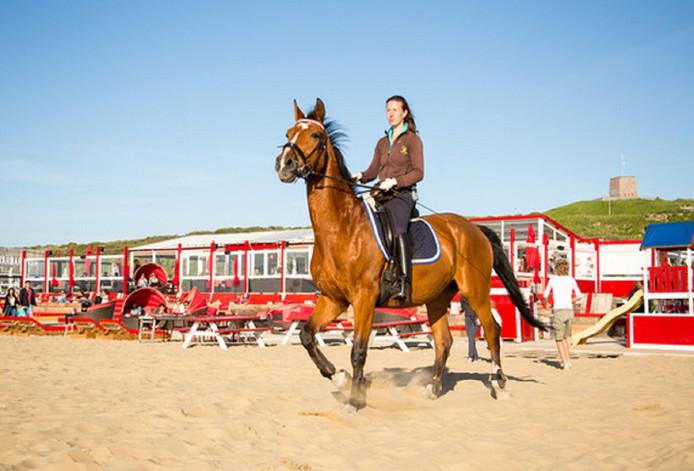 Het paard met amazone is al net zo prachtig als de zomerse dag. Gezien bij Beachclub Culpepper op het Zwarte Pad in Scheveningen.