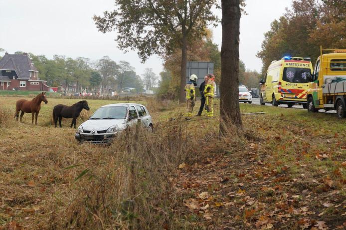 Een man is donderdag met zijn auto in een paardenwei beland.