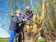 Doesburgse scholen willen door met natuureducatie