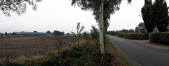 Links de kippenstal, rechts begint de oprit van de familie Smits.