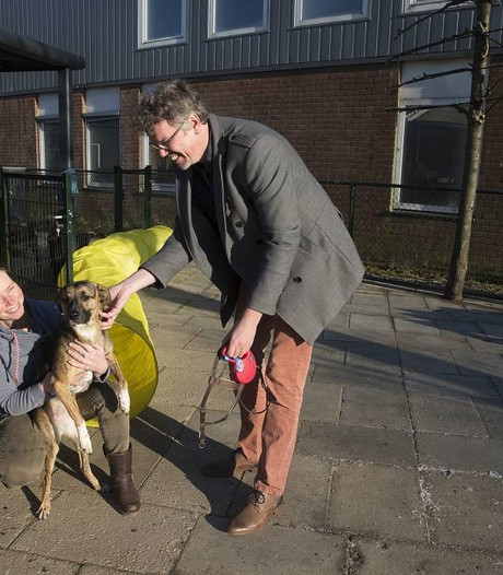 Pilletjes of het asiel, dat is de keuze voor hond Simba