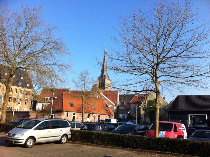 De politiek hoeft zich geen zorgen te maken over het ontbreken van de groene long in hartje Doesburg.