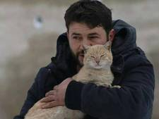 Man uit Aleppo ontfermt zich over 150 zwerfkatten