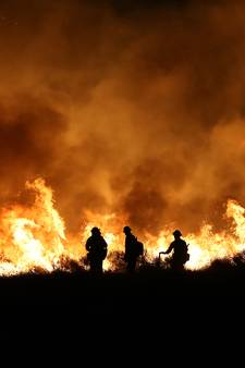 Vuurzee legt 150 woningen in Californië in as; twee doden