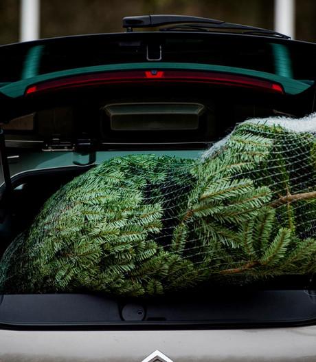 Laat je kerstboom thuisbezorgen door Uber