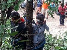 Vrouw (52) omgekomen na executie met giftige mieren