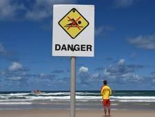 Australië overweegt haaiennet na derde slachtoffer binnen maand