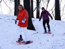 Eindelijk skiën en langlaufen op Posbank in Rheden