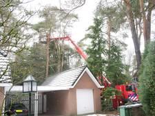 Loshangende tak dreigt op huis te vallen in Wageningen