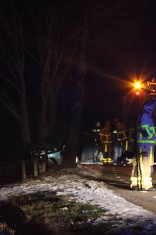 Man (59) overleden na botsing tegen boom in Neede