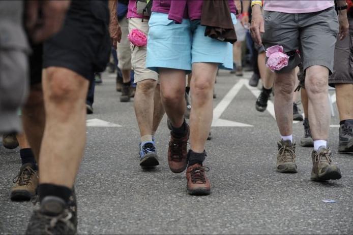 Wandelaars lopen de Nijmeegse Vierdaagse.