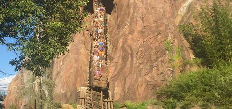 Ritje achterin de achtbaan kan helpen tegen nierstenen