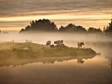 Twintig kanshebbers voor titel 'Mooiste natuurgebied van Nederland'
