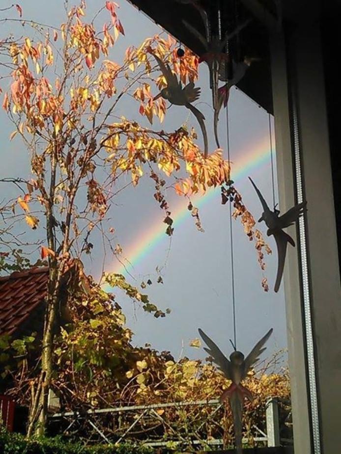 Deze mooie regenboog werd in Dieren gespot.