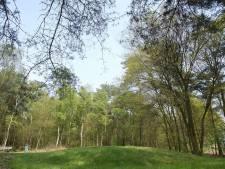 Grafheuvel uit de bronstijd ontdekt op Vliegbasis Eindhoven