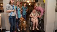 Golden retriever Koda wordt nieuwe bewoner van woonzorgcentrum Armonea
