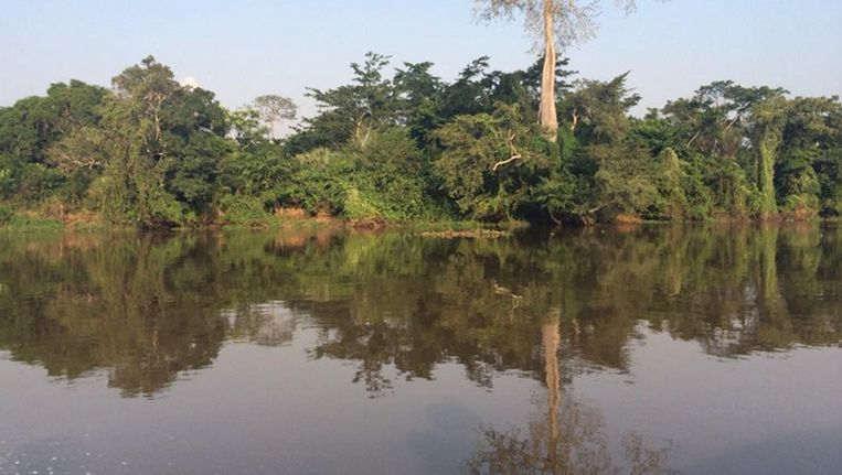 De Oubangui-rivier