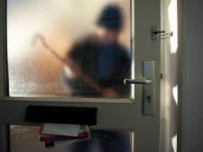 'Alerte buurtbewoner' verjaagt inbrekers in Ubbergen