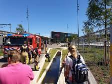 Eendjes hebben het niet makkelijk in Hengelo: vijfde reddingsactie van brandweer