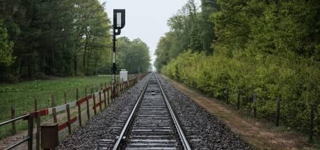 Politie krijgt 34 tips over mysterieuze treindode Wehl: 'Geeft de zaak weer energie'