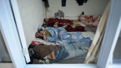 """N-VA: """"Gratis rechtsbijstand voor asielzoekers hervormen"""""""