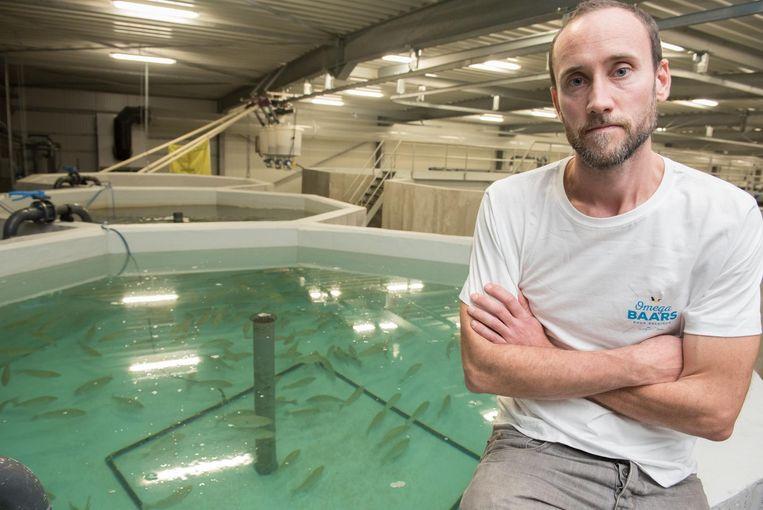 Bezieler Stijn Van Hoestenberghe bij een van de bassins waarin hij de omegabaars kweekt.