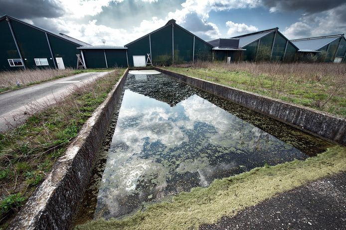 De kippenboerderij in Groesbeek waarin een melkfabriek moet komen.