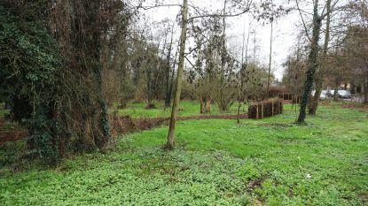 Brussegem krijgt er twee bossen bij (en inwoners mogen kiezen hoe die eruit zien)