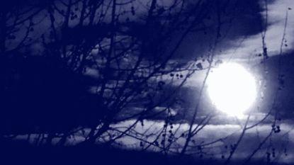 Gemeente en Natuurpunt doen mee aan Nacht van de Duisternis