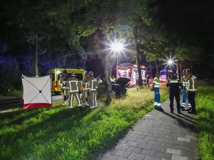 Automobilist (27) uit Hooge Mierde overleden na botsing tegen boom in Lage Mierde