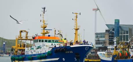Minder tong en schol vissen uit de Noordzee
