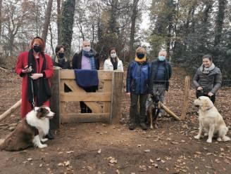 Honden kunnen vanaf dit weekend vrij rondlopen in losloopzone in Pidpa-bos: 'In het voorjaar verschijnt ook in het Philipsbos zo'n zone'