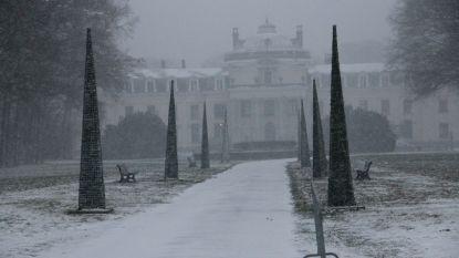 FOTOREEKS: sneeuwtapijt in Blauwhuispark en andere sneeuwtaferelen