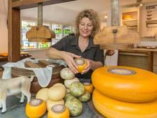 Rhoda maakt echte Gieterse kaas