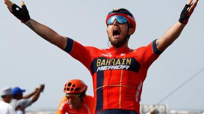 Colbrelli aan het feest in Oman, Van Avermaet strandt weer op podiumplaats