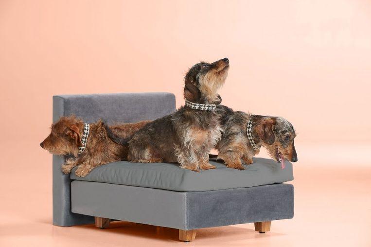 Boxspring voor honden, 129 euro