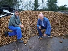 Wie helpt deze Veldhovense boer voor het goede doel van zijn èrpel?