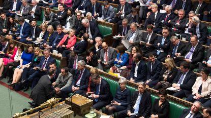 """""""Jij moet stemmen zoals ik het zeg"""": Brits parlementslid laat zien hoe verdeeld zijn achterban is"""