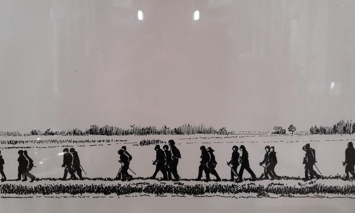 Wandelaars lopen door het buitengebied van Hoeven en Oudenbosch, al dan niet met Nordic Walking-stokken.