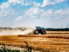 Overheid biedt hulp aan boeren na aanhoudende hitte