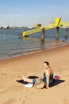 Strandgangers niet blij met rooien groen op Heijplaat: 'Dat paadje naar strand maakte het charmant'