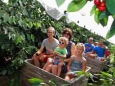 Rivierenland heeft er een nieuwe attractie bij: de Elstar Express