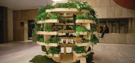 Ikea invente le jardin urbain sphérique
