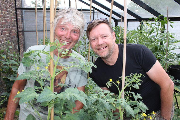 Wilfried Brits en Jo Van Nevel zijn klaar voor Woodstock 50.