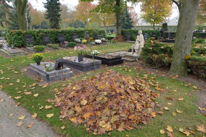 Herfstbladeren op de begraafplaats in Boxtel