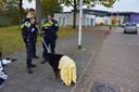 Agent redt hond uit water in de Reeshof in Tilburg