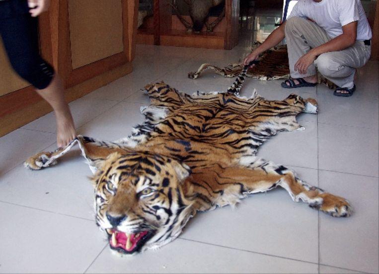 Tijgervellen die op zwarte markten in Birma, Thailand en China worden verkocht. (EPA) Beeld EPA